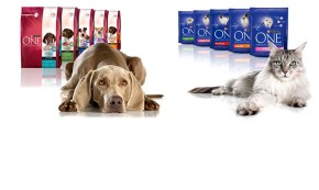 Purina ONE 3. viikon testi: Lue testiryhm&auml;n tulokset!